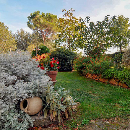 Apartments with swimming pool and park for children in Val di Chiana | Villa Scannagallo in Foiano della Chiana